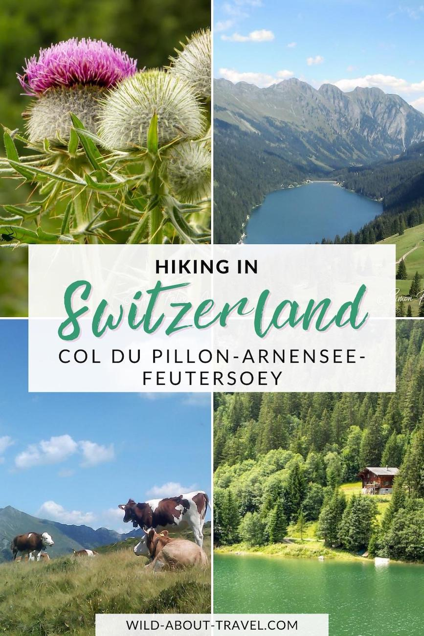 Hiking To Arnensee, Switzerand