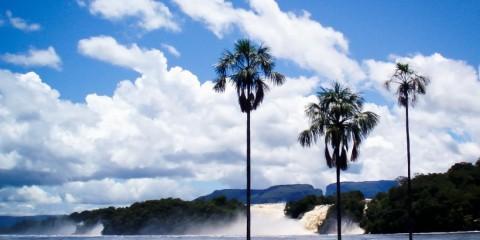 Venezuela, Canaima