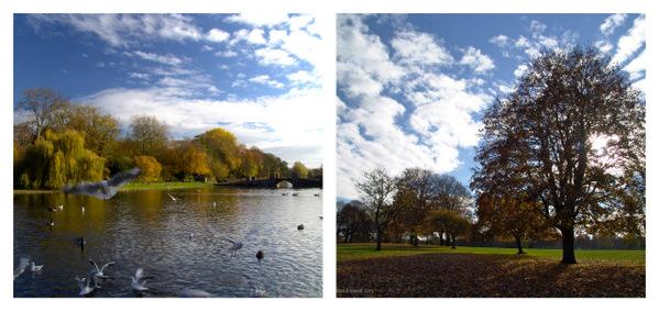St-Albans-Verulamium-Park