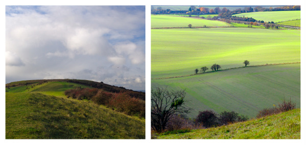 Walking in Herefortshire Countryside