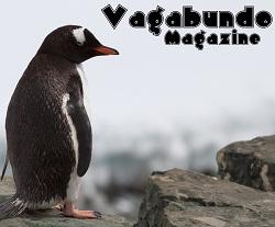 vagabundo-magazine