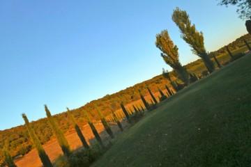 Maremma-Countryside.jpg