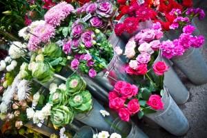 London, Borough Market Flowers