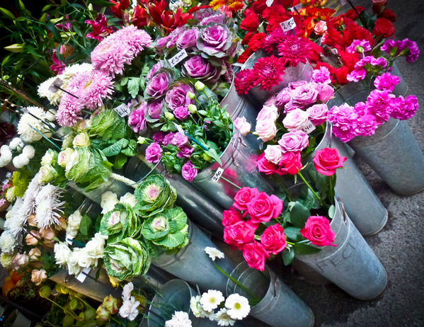 Borough-Market-Flowers