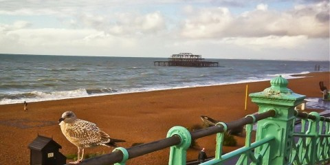 Brighton-Beach-Winter