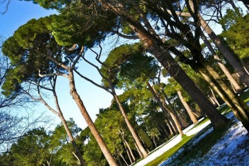 Rome, Borghese Gardens in the Snow
