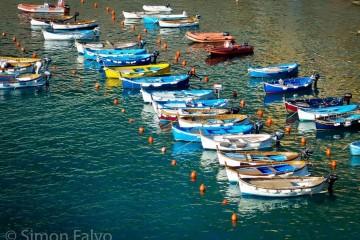 fishing-boats-cinqueterre