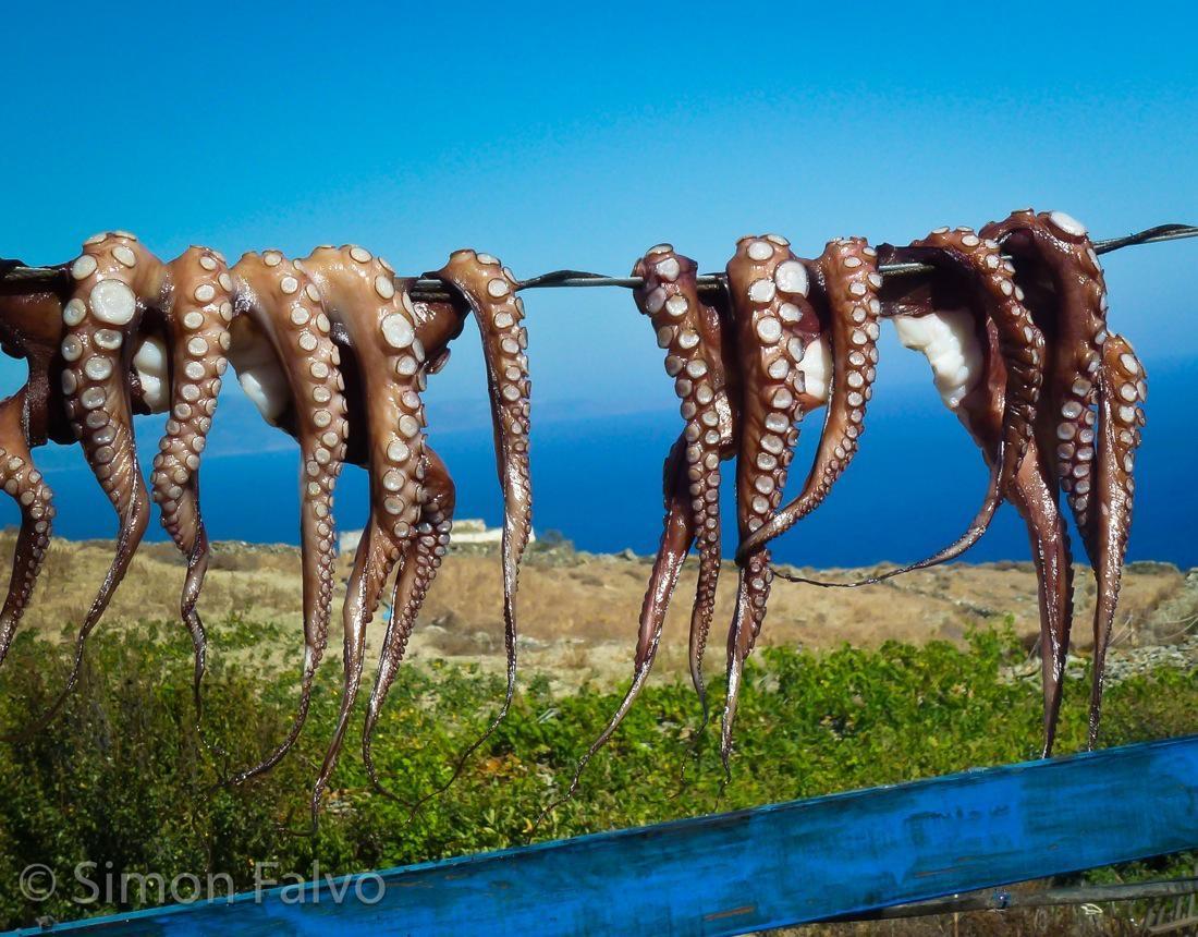 Greece, Folegandros Octopuses