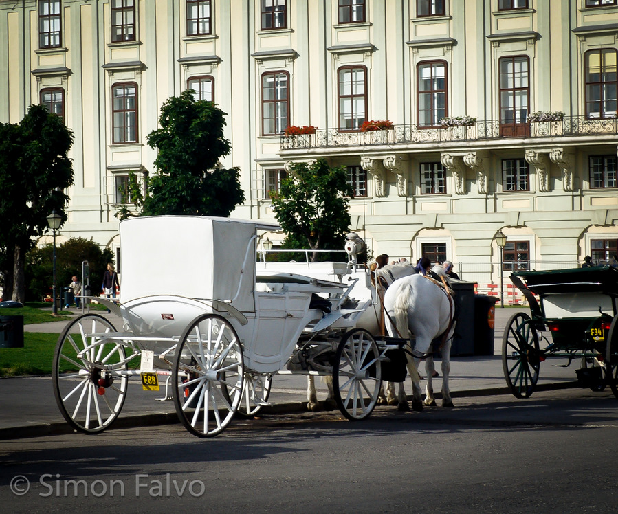 Vienna-Horse-Drawn-Carriage