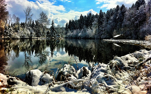 Winter Paradise on a Bavarian Lake