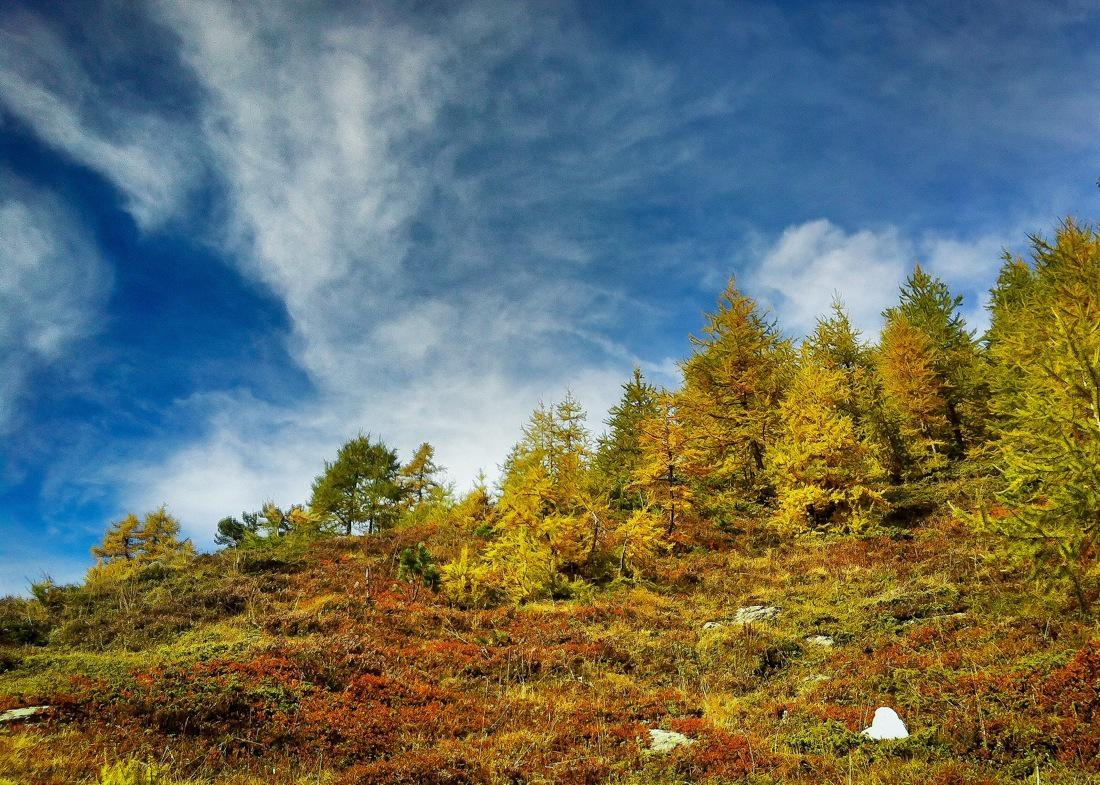 Switzerland. Valais, Autumn Colors