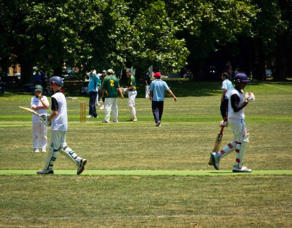 Auckland, Kids Playing Cricket Small