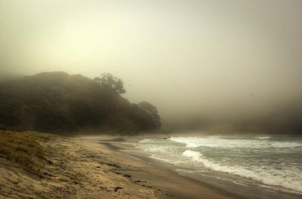 Misty Northland