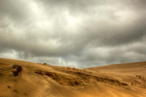 Northland Dunes