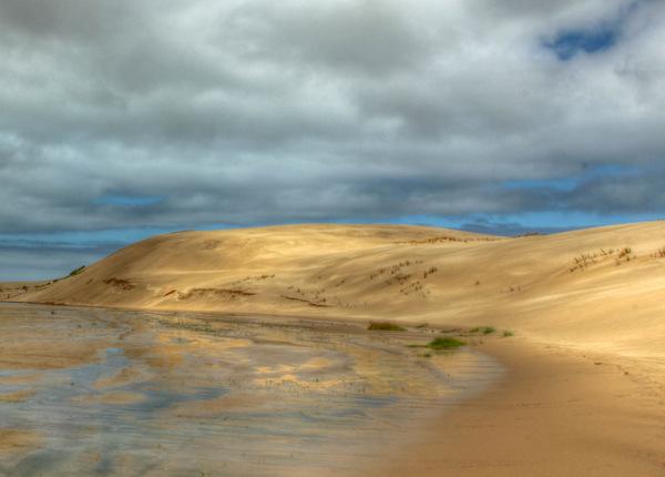 Northland Sand Dunes
