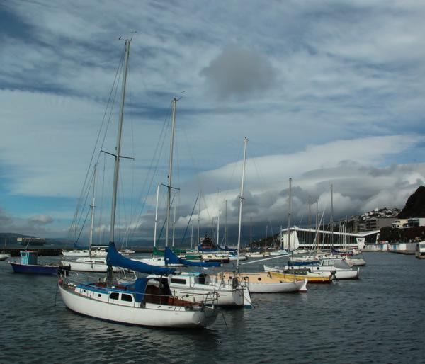 Wellington Boats