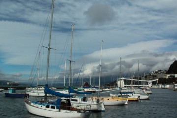Wellington-Boats1