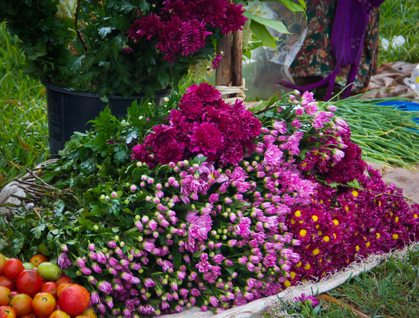 Burmese Market, Pink and Purple Flowers