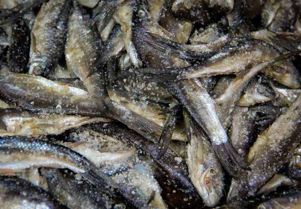 Burma Market, Preserving Fish With Salt
