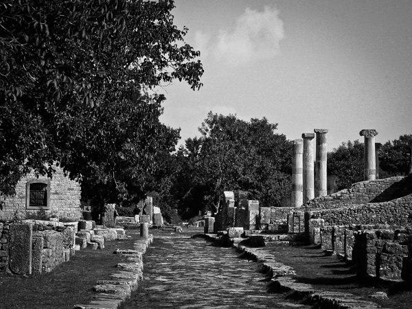 Sepino Forum and Basilica