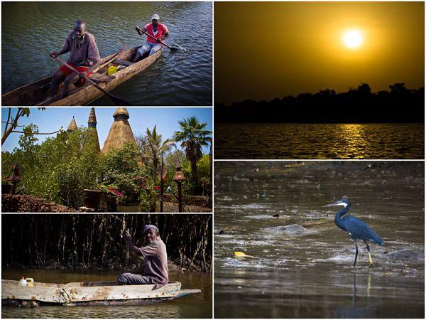 Gambia, Mandina, Bird Wathcers Paradise