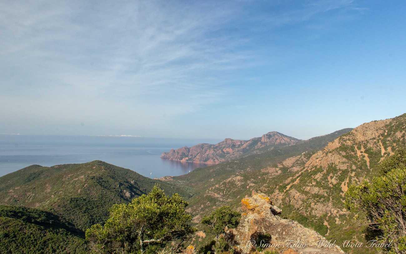 Corsica - Calanches de Piana