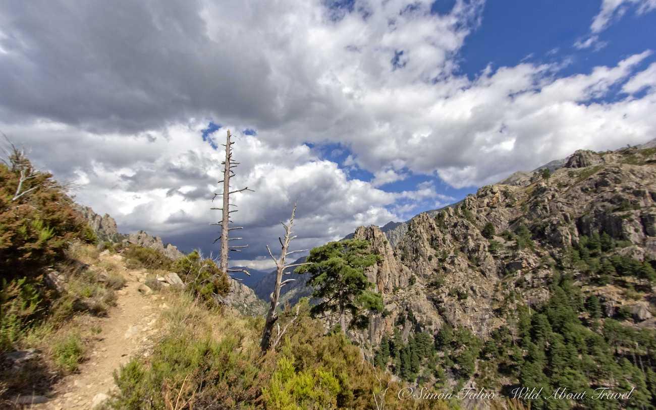Corsica - Restonica Valley