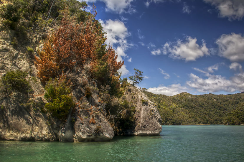 New Zealand, Abel Tasman NP-3_opt