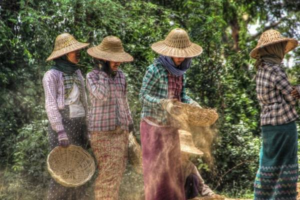 Burma Women at Work