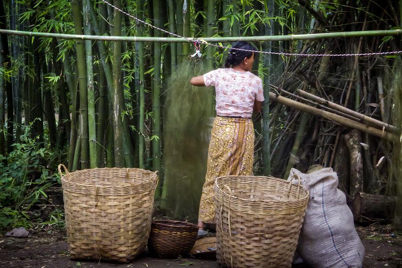 A Bruma Woman Setting Fishing Nets