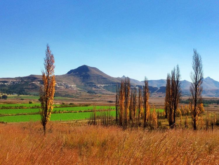 South Africa, Free State