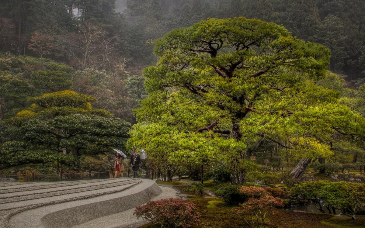 kyoto silver pavilion gardens