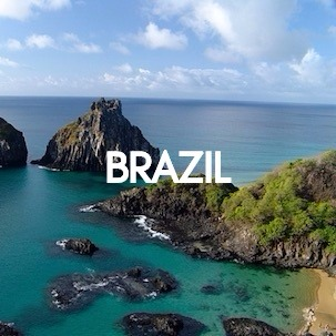 Wild About Travel - Brazil