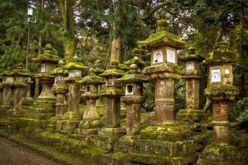 Larterns at Kasuga Shrine [2]