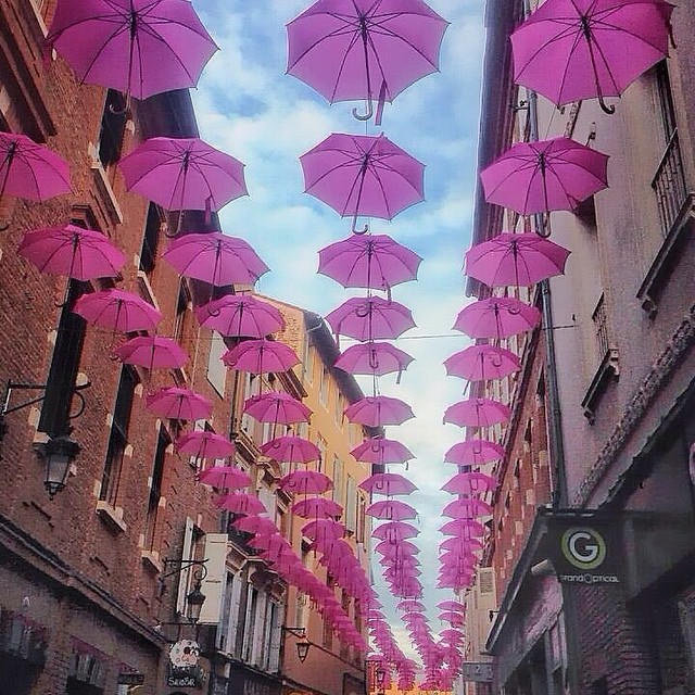 France, Albi, Pink Umbrellas