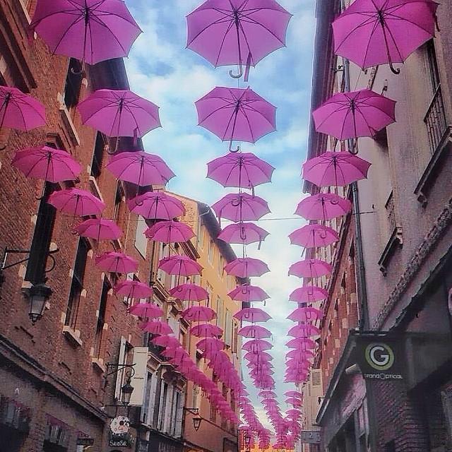 France, Albi, Pink Umbrellas