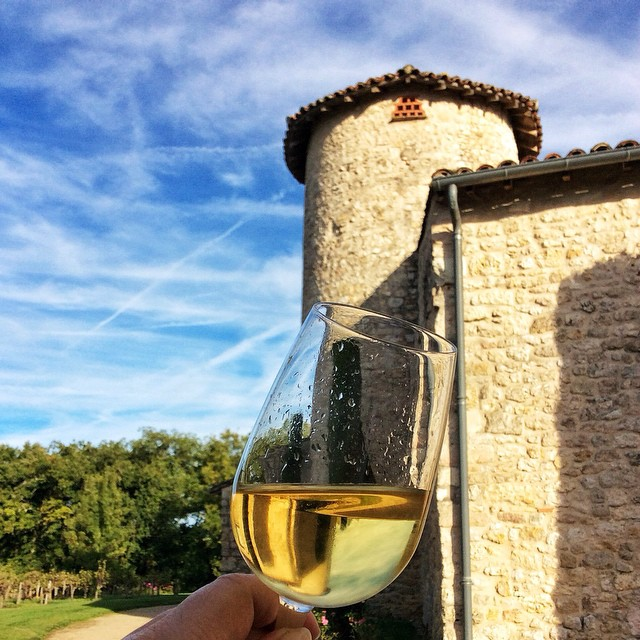 France, Wine Tasting at Chateau Salettes