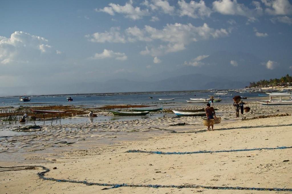 Nusa Lembongan, Beach at Low Tide