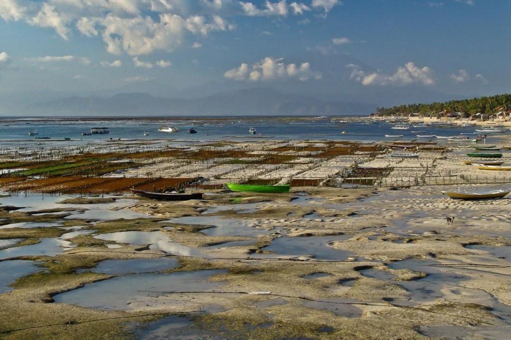 Nusa Lembongan, Boats and Sand at Low Tide