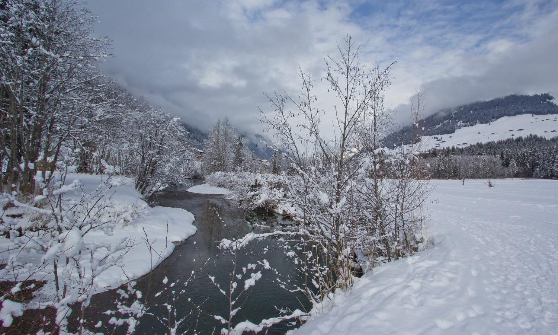 Switzerland, Lauenen in Winter