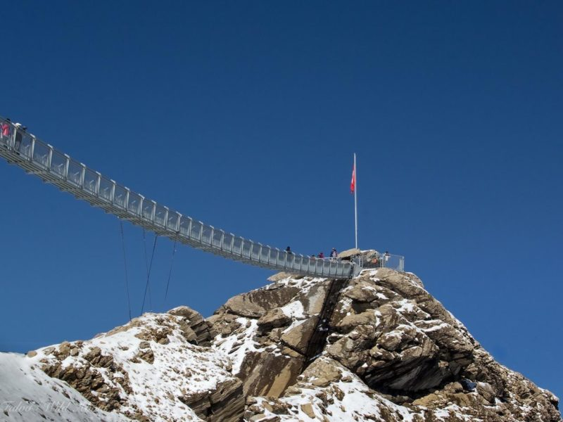 Les Diablerets, Peak Walk Bridge [Cover]