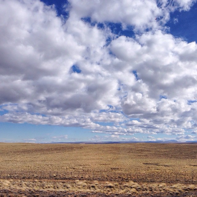 Patagonia, The Steppe
