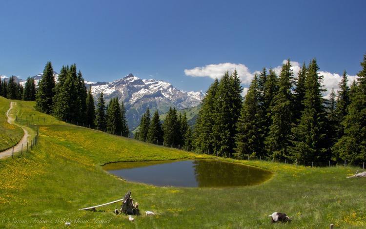 Wispile Pond