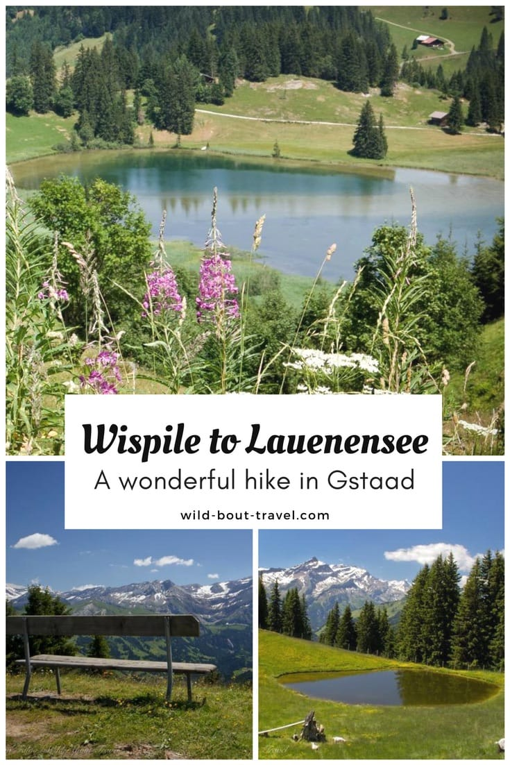 Wispile to Lauenensee Best Hike in Gstaad (2)