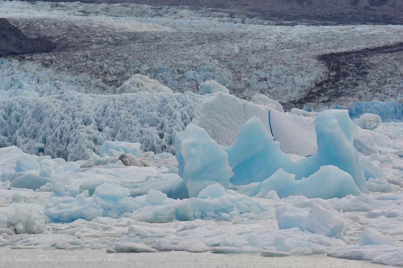 Argentina, Upsala Glacier [2]