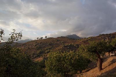Corsica Countryside