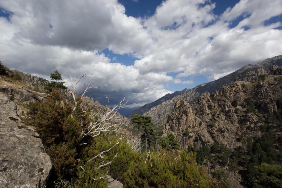 Corsica - Hiking Restonica Valley