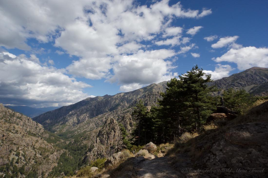 Restonica Valley A Must See in Corsica