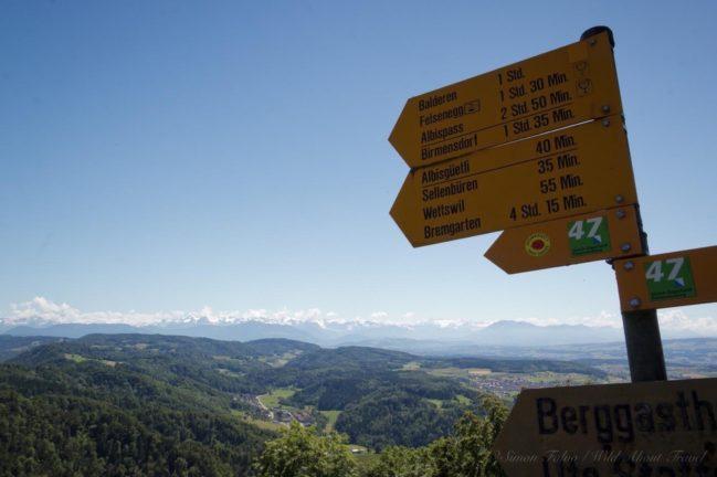 hike-uetliberg-felesenegg
