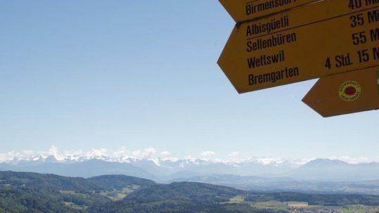 Hike Uetliberg-Felsenegg